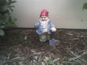 Weeder Gnome on June 30, 2009